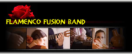 Flamenco Fusion Band